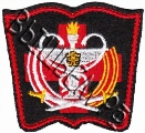 Шеврон полевой Западного военного округа ВС РФ